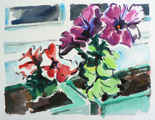 Window-Box-Sketch-200908