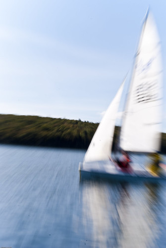 ocean water sailboat race boat sailing zoom action fast 420 laser faux shearwater yachtclub sailingregatta twoman regionalcadettrainingfacility