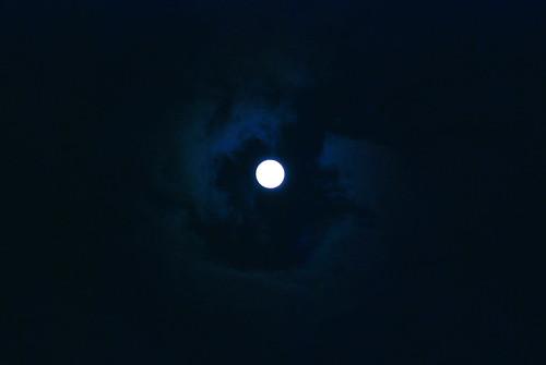 中秋の名月 - the harvest moon