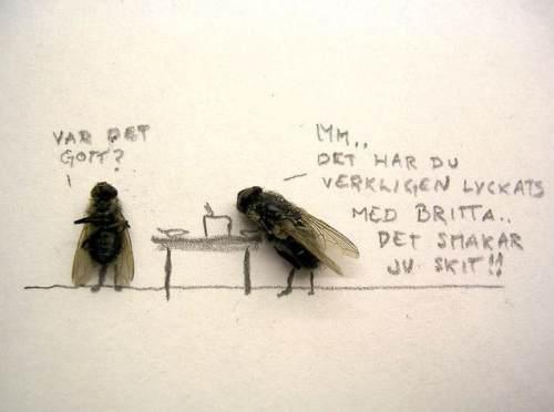 dead-flies-art-6