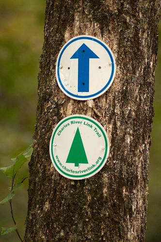 imgp9862 - Charles River Link Trail