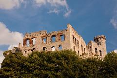 IMG_0869 (psaid) Tags: building castle ruins ruin poland polska ruina zamek małopolska budynek ruiny budynki ogrodzieniec zamki budowle budowla średniowiecze maopolska ma³opolska redniowiecze
