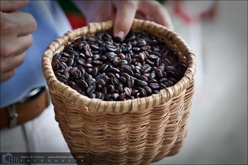 4009902532 d22932b510 El triángulo del café