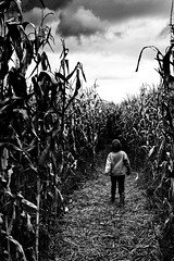LOST (wbsloan) Tags: sky bw detail fall halloween girl field clouds oregon contrast canon dark walking high scary corn october boots ominous straw highcontrast vivid creepy spooky maze hay maize muddy corvallis 50d