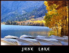 June Lake (janetfo747 Year of the Horse!) Tags: california trees lake fish fall water silver boats boat colorful vivid sierra sierranevada ohhh junelake tistheseason coth monocounty