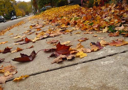 Oct29-Sidewalk1