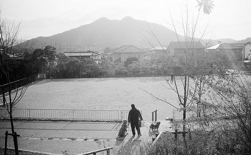 CG0102 (00113)福岡市東区SN28a立花山と犬