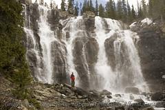 Tangle Creek - Upper Falls (Neil Young Photography (nyphotos.ca)) Tags: park canada water creek waterfall nikon jasper falls national alberta tangle