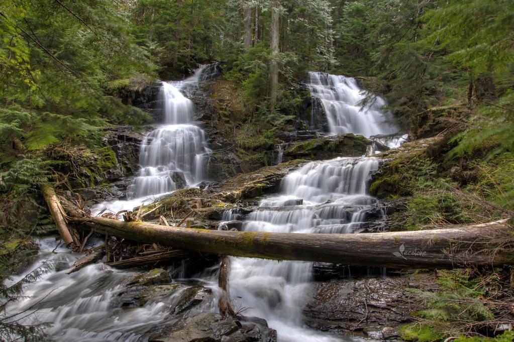 log over falls