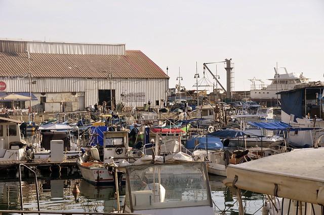 Arab Port Yafo