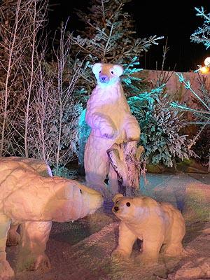 ours la nuit.jpg