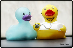 Dr. Duck (DRoberts Photography) Tags: toys ducks hummor