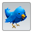 48px x 48px Twitter Icon