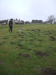 Archeologist surveys mole hills