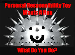 Personal Responsibility Toy