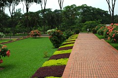 Garden paths, flowering trees, purple pink and green,    Jatiyo Smriti Soudho Independence memorial park, Savar, Dhania, Dhaka, Bangladesh (Wonderlane) Tags: pink trees brick green purple walkway dhaka dhania broad bangladesh pathway savar wonderlane 1676 gardenpaths jatiyosmritisoudho  independencememorialpark jatiyosmritisoudhoindependencememorialpark