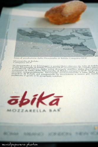 Mozzarella bar 2