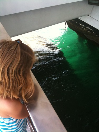 Rachel looks down at the USS Arizona battleship in Pearl Harbor