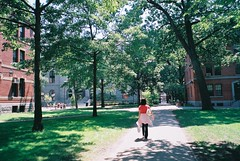 Ann in Harvard