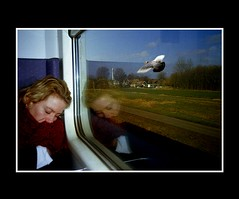 People (Theo Kelderman) Tags: people woman haarlem netherlands train dream nederland vrouw trein droom mensen vogelbird theokeldermanphotography