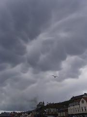 Ammonite sky (Nekoglyph) Tags: cloud storm dark harbour seagull yorkshire apocalypse steam roofs whitby mammatus therebeastormabrewin