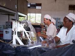 Fábrica cubana de vinos