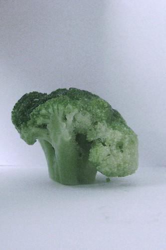 brocolli 002