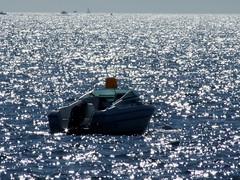 Mer toiles (terpino) Tags: mer soleil bateaux reflet toiles ocan