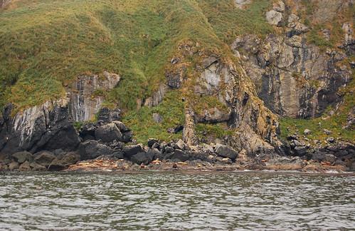 DSC_5212 Solander Island