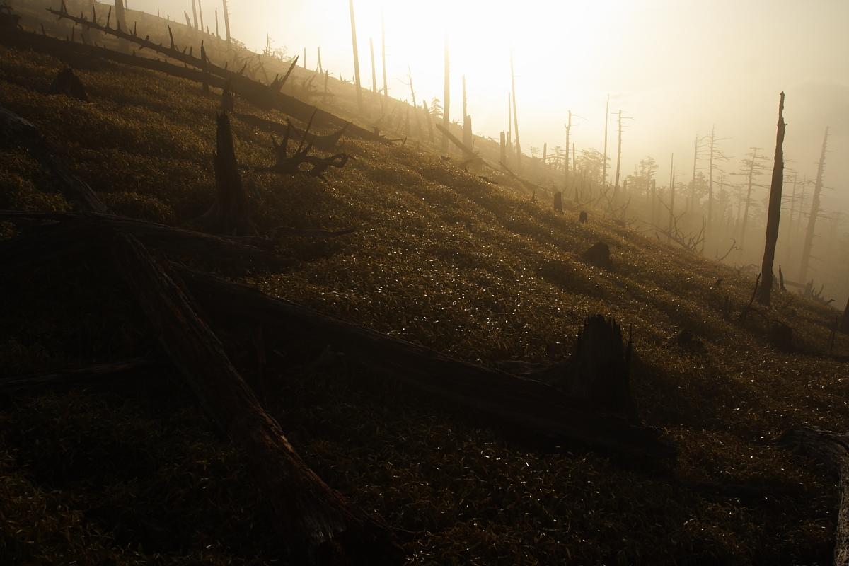 Mt. Odai