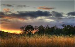 PA241554_5_6_7_tonemapped (carpunder) Tags: sunset nature olympus missouri hdr photomatix stcharlescounty 4exp sp560uz indiancampcreek