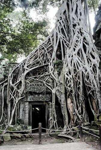 Angkor 32
