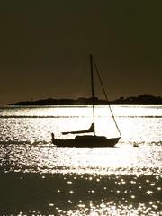 sail away (dappledesigns) Tags: winter sunlight water ma island boat october horizon salt down silhouete silouette sparkle ledge sail salem mass float shimmer sillouhette