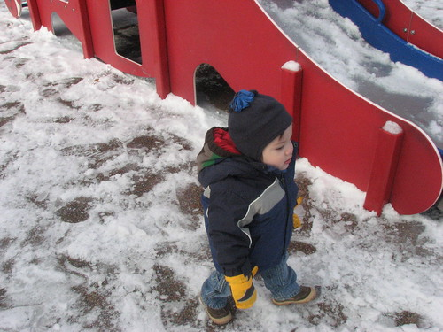 at the park in the snow