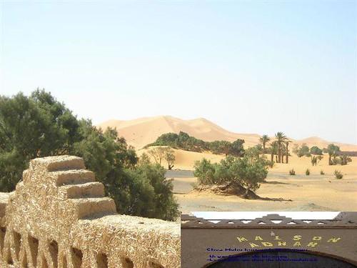 1- ولاية ادرار : تقع في الجنوب الغربي للجزائر. هي