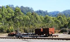 Rusting Railway Cars - Tasmania (spacountry) Tags: tasmania tassie tasmania2009