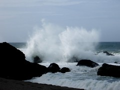 Ocean at Bodega Bay