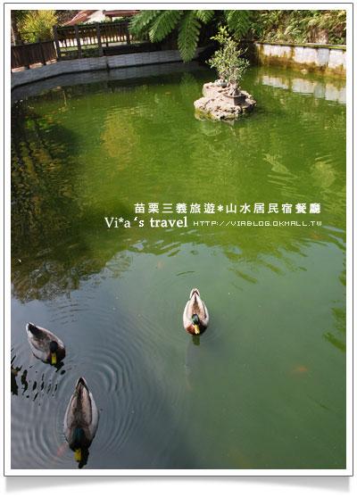 【苗栗大湖民宿餐廳】大湖美食~山水居餐廳民宿