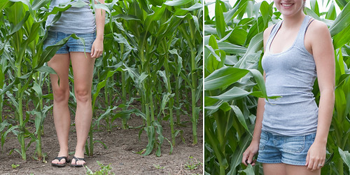 ...not exactly knee high...