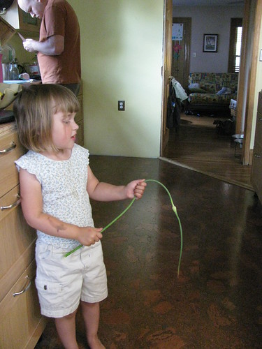 garlic scape wand
