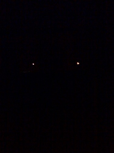 If I snap a photo at my window in the dark it looks a little like the street lights are two glowing eyes