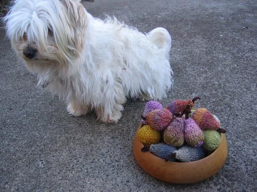 bowl minis