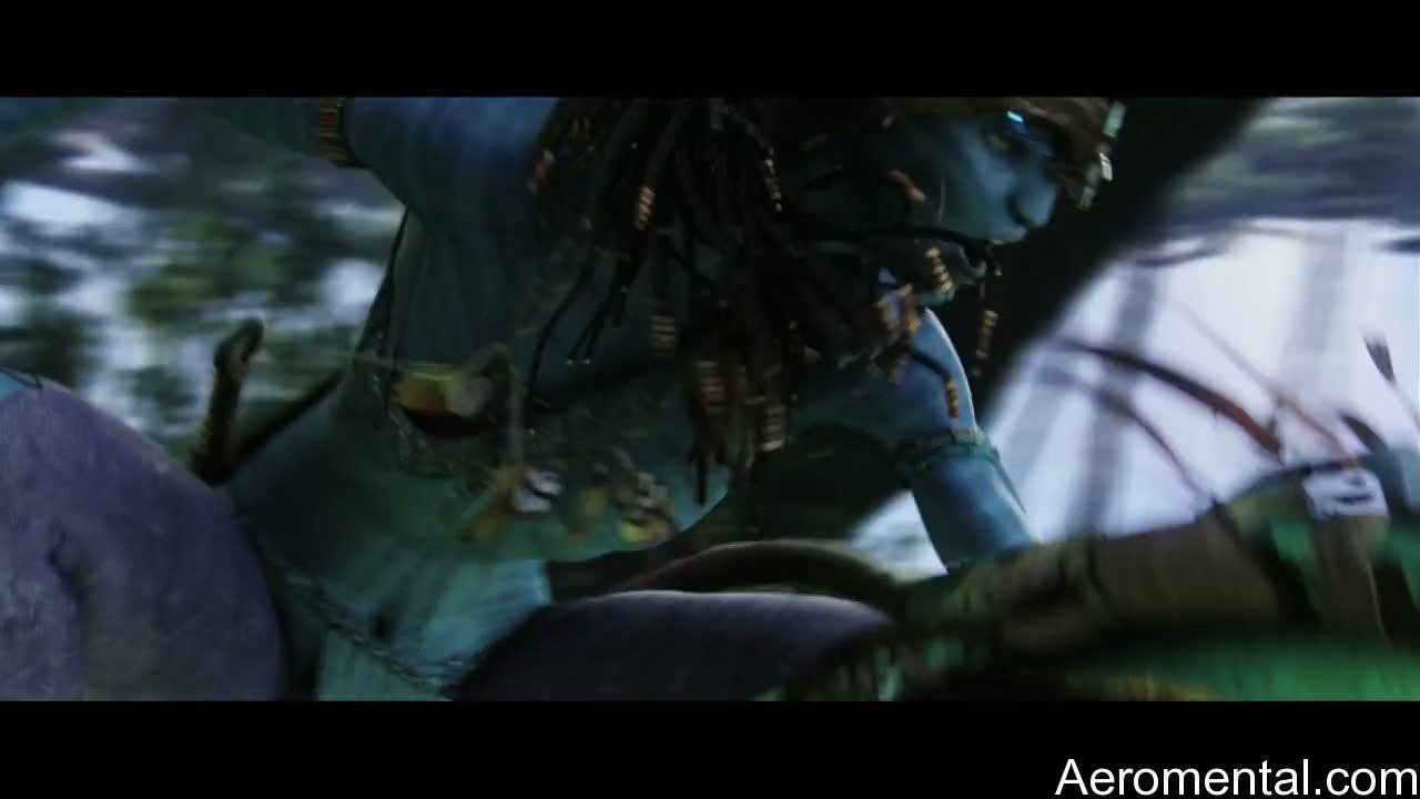 navi Avatar guerrera