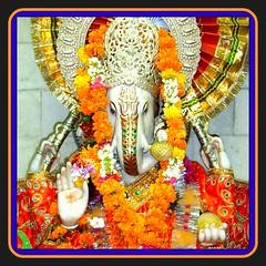 Ganesh Chaturthi - holy ceremony in India (Ginas Pics) Tags: smart ganesha god hindu hinduism hindufestival ginaspics licensedwithgettyimages reginasiebrecht copyright©2015reginasiebrecht
