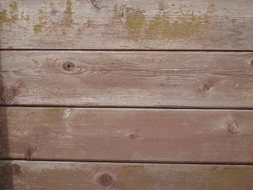 DM Wood Texture #6