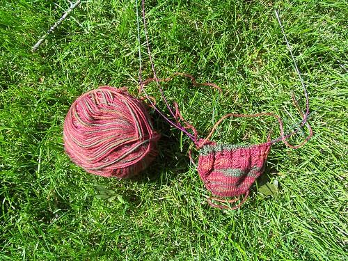 Trilobyte Socks 9/2/09