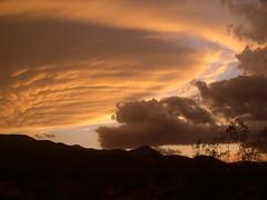 Joshua Tree National Park: clouds (John Steedman) Tags: california usa clouds america unitedstates unitedstatesofamerica northamerica estadosunidos joshuatreenationalpark 美國 norteamérica nordamerika amériquedunord américadelnorte 北アメリカ カリフォルニア州 アメリカ合衆国 加利福尼亚州 北美洲