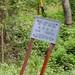 菅の沢林道