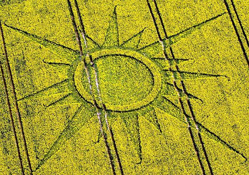 crop-circles-field-photo-16