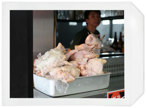 pollo_5